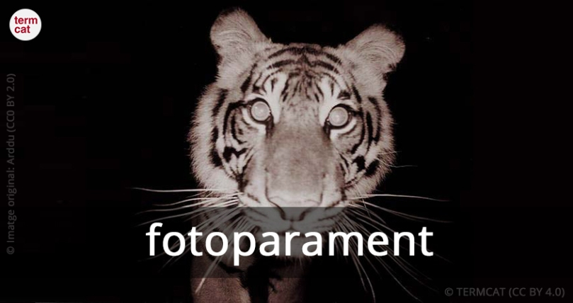 fotoparament_Arddu_CC0_BY_2.0