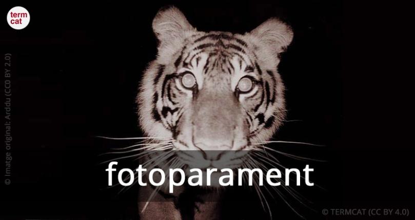 fotoparament_Arddu_CC0_BY_2.0