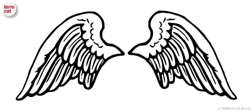 angel_inversor
